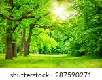 summer landscape with forest... | Shutterstock . vector #287590271