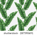 watercolor tropical palm leaves ... | Shutterstock .eps vector #287590691