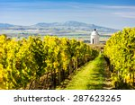 Chapel With Vineyard Near Velk...