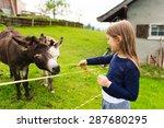 Cute Little Girl Feeds Donkey...