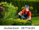 Creative Garden Designer....