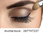 Makeup Close Up. Eyebrow Makeu...