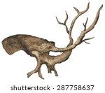 Watercolor Bare Tree  Snag ...