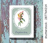 card template with floral... | Shutterstock .eps vector #287764214