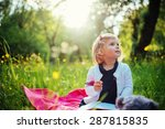Child On Picnic