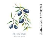 watercolor black olive branch...   Shutterstock .eps vector #287833961