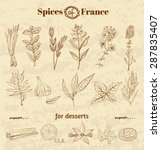 spice in french cuisine. herbs... | Shutterstock .eps vector #287835407