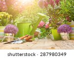 Gardening Tools And Flowers  O...