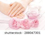 french manicure with rose...   Shutterstock . vector #288067301
