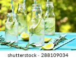 citrus fizz with rosemary in a... | Shutterstock . vector #288109034