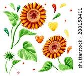 watercolor floral elements set. ... | Shutterstock .eps vector #288158411