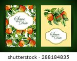 wedding invitation or greeting... | Shutterstock .eps vector #288184835