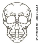 art skull surreal.hand pencil...   Shutterstock . vector #288192665