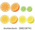 grapefruit  lemon  orange and... | Shutterstock .eps vector #288218741