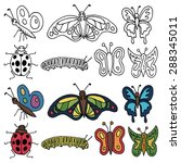 Set Of Hand Drawn Insects In...