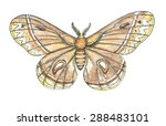 moth butterfly watercolor... | Shutterstock . vector #288483101