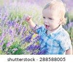 Happy Baby Boy In Lavender...