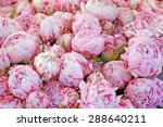 Bouquet Of Peony Flowers On Th...