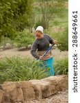 Small photo of SUGARCREEK, OH - MAY 19, 2015: A young Amish woman working in the garden on a spring morning.