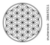 flower of life vector  sacred... | Shutterstock .eps vector #288655211