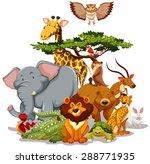 Group Of Wild Animals Gatherin...
