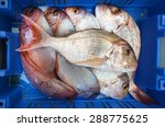 Frozen Fish On Display In...