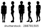 vector silhouette of a woman on ... | Shutterstock .eps vector #288781505