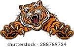 tiger jump | Shutterstock .eps vector #288789734