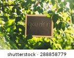 Blackboard Hanging On Tree At...