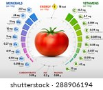 vitamins and minerals of tomato.... | Shutterstock .eps vector #288906194