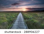 wooden path on marsh and summer ... | Shutterstock . vector #288906227