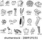 collection of freehand drawing... | Shutterstock .eps vector #288919151