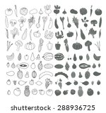 set of hand drawn vegetables... | Shutterstock .eps vector #288936725