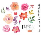 vector floral set. colorful... | Shutterstock .eps vector #289092644