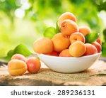 Apricot. Ripe Organic Apricots...