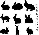 rabbits collection   vector | Shutterstock .eps vector #28925662