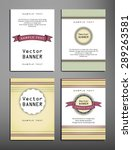 set of brochures in vintage... | Shutterstock .eps vector #289263581