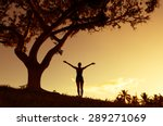 silhouette of woman with hands... | Shutterstock . vector #289271069