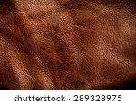 dark brown leather for concept... | Shutterstock . vector #289328975