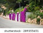 wall of flowers | Shutterstock . vector #289355651
