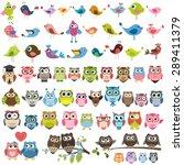 owls and birds set | Shutterstock .eps vector #289411379