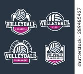 set of sport volleyball badge... | Shutterstock .eps vector #289485437