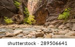 hiking the narrows | Shutterstock . vector #289506641