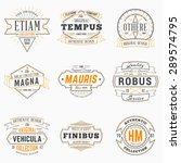 set of hipster vintage labels ... | Shutterstock .eps vector #289574795
