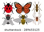 vector set of different insects ... | Shutterstock .eps vector #289653125
