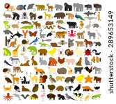 Stock vector vector set of cartoon different animals isolated 289653149