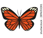 vector monarch butterfly...