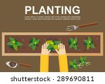 Planting Illustration. Plantin...