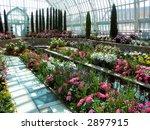 flower arboretum   Shutterstock . vector #2897915