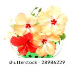 the hibiscus basket background | Shutterstock . vector #28986229